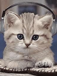 cat listening to music-thumb-238x317-369715